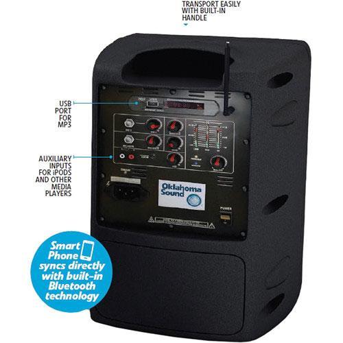 Pro Audio 100 Watt Wireless Speaker System