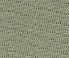 Eucalyptus 5773C