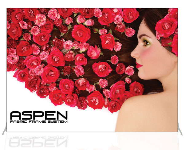 10ft Aspen Backwall Display