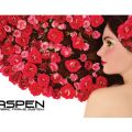 10ft Aspen Backwall Graphic Only View