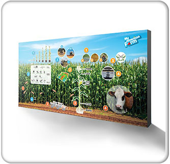 American Farm Bureau Foundation for Agriculture 15ft Cornfield Backwall Banner 3 wide Thumbnail