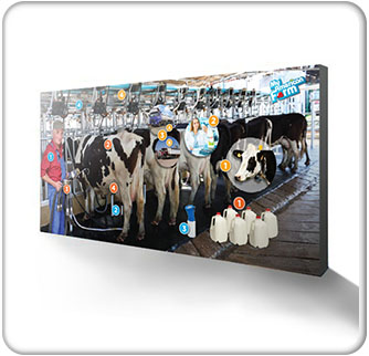 American Farm Bureau Foundation for Agriculture 15ft Dairy Backwall Banner 3 wide Thumbnail
